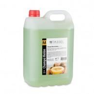 Champú Neutro Melón - 5 Litros Tassel | comprar champú neutro melón, fresa coco al mejor precio | Champú barato en en garrafas para peluquería profesional